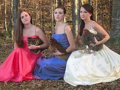 fotos familias raras chicas pavo
