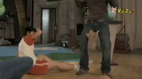 perrito praderas dramatico parodia pantalones