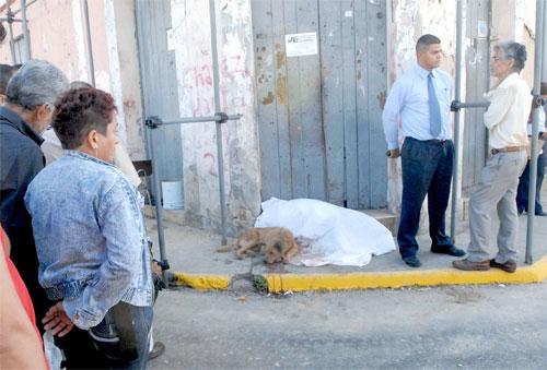 perro amo muerto venezuela