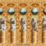 autoestereograma monos
