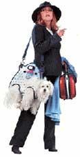 chindogu porta perros paseo