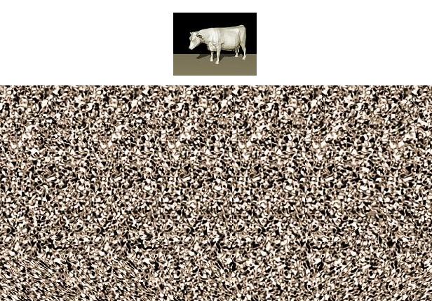 estereograma vaca