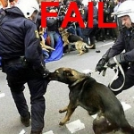 Fails policiales