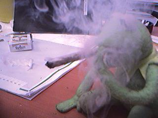gustavo kermit fumando 10