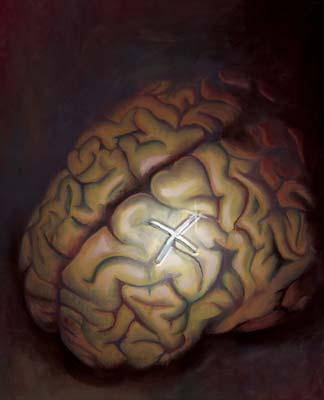 memoria-memory-cerebro
