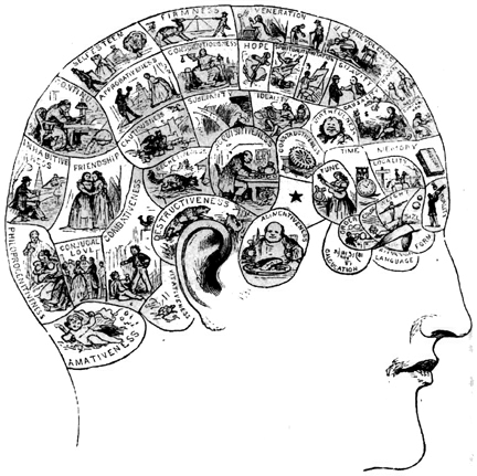 memory-memory-cerebro-brain