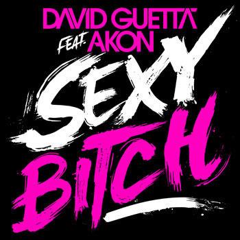 sexy chick david guetta akon