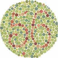 test color vista 56