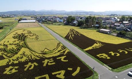 Kanagawa Oki Nami Ura campo arroz