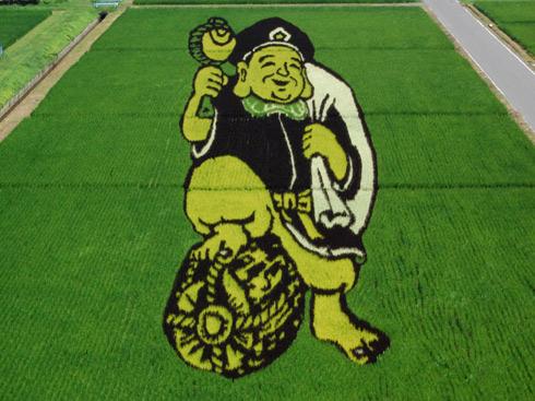 campos-arroz-dibujos-arte-20