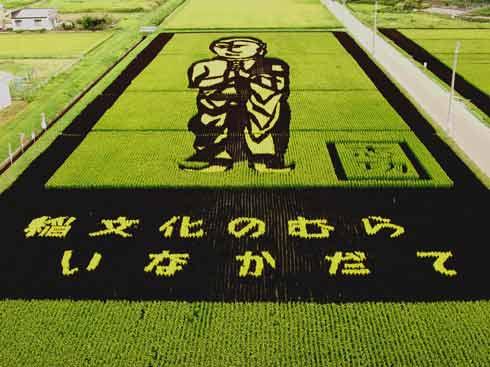 campos-arroz-dibujos-arte-22