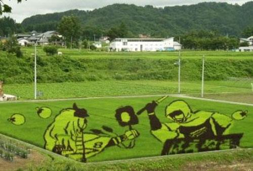 campos-arroz-dibujos-arte-28