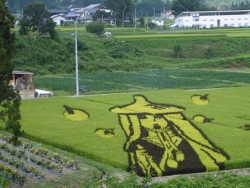 campos-arroz-dibujos-arte-29