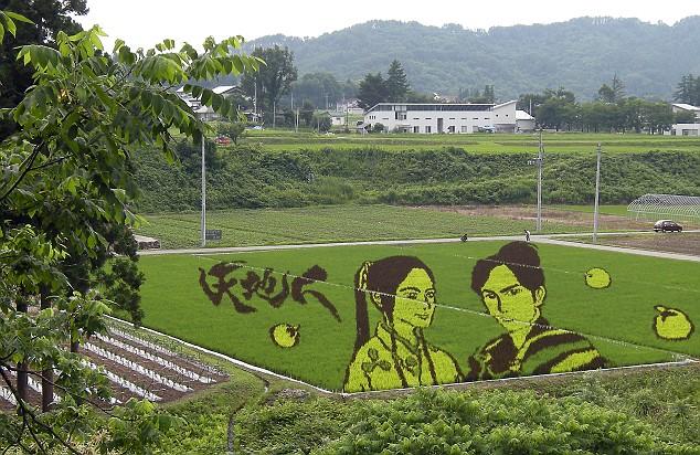 campos-arroz-dibujos-arte-Naoe-Kanetsugu-osen-Tenchijin