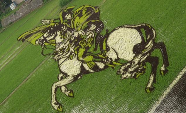 campos-arroz-dibujos-arte-napoleon