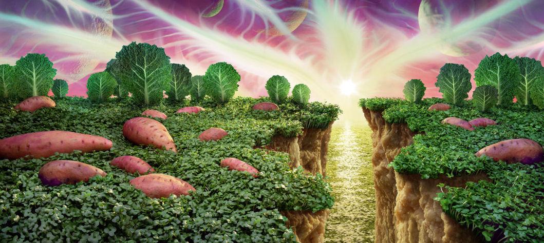 paisaje col patatas