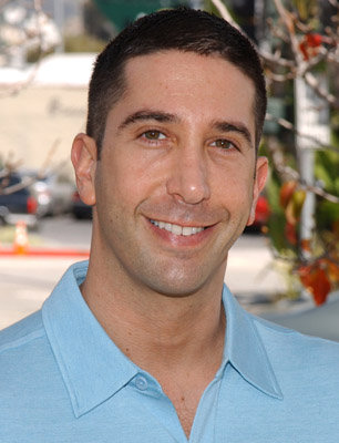 david-schwimmer-despues