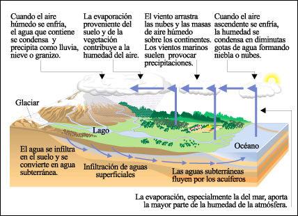 ecosistema-ciclo agua mar rios nubes