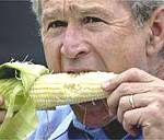 george bush maiz