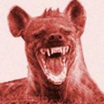 hiena riendo riendose