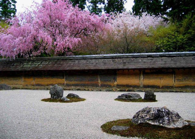 ryoanji grava jardin rocas imagen