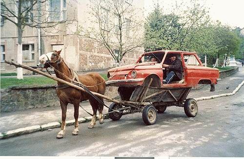 imagenes-humor-animales-caballo-automovil