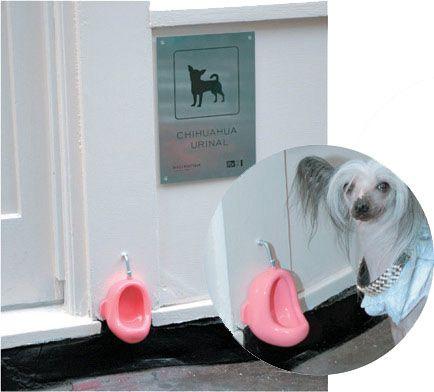 imagenes-humor-animales-perrito-bano