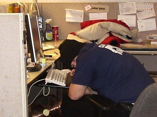 imagenes oficina humor risa dormir