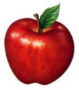 manzana tentacion eva afrodisiaco