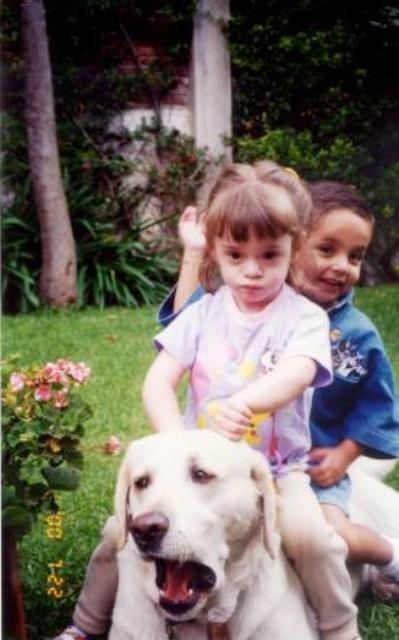 animales-humor-perro-ninos