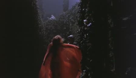 dracula-bram-stoker-coppola-pelicula-cine-07