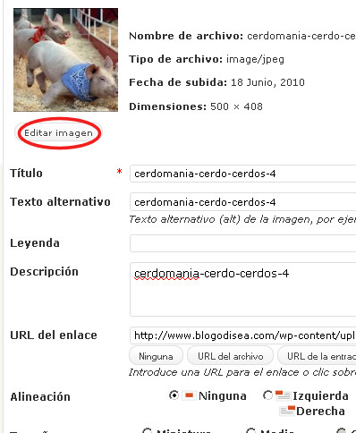 editar imagenes wordpress panel