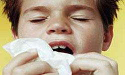 estornudar estornudo