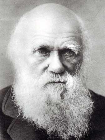 evolucion-darwin_charles-biologo