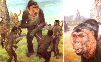 gigantopithecus_giganto-simio-blacki