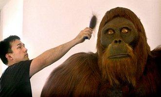gigantopithecus_giganto-simio-gigantes museo