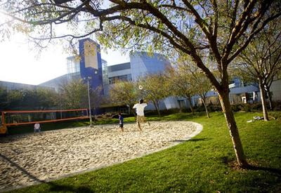 googleplesk-google-sede-oficinas-volleyball