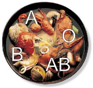 grupo sanguineo sangre dieta alimentacion