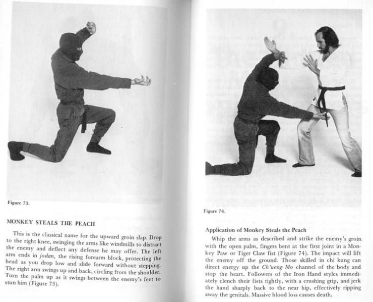 imagenes-graciosas-ninja-huevos