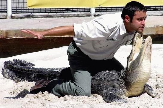 imagenes-internet-cocodrilo-hombre