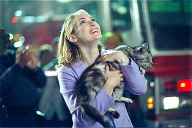 mr_deeds-winona-ryder-adam-sandler-gatos-cats