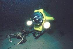 rovs_filmacion fondo marino