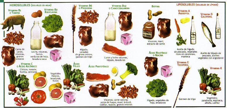vitaminas grafico alimentos
