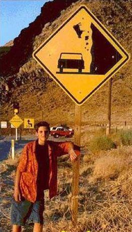 carretera-humor-senal-trafico vacas