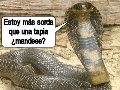 cobra_serpiente-sorda