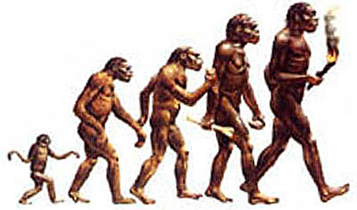 evolucion-hombre-ser-humano