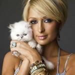 Juego para arreglar a Paris Hilton