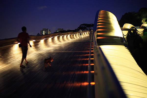 Puente ondulado Henderson Singapur 4