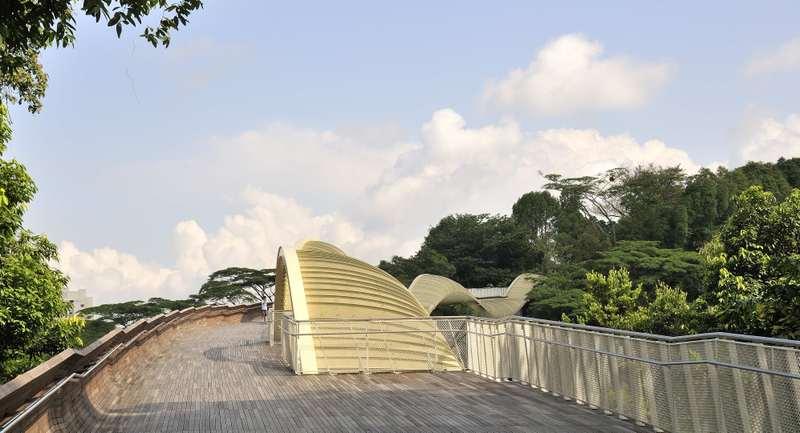 Puente ondulado Henderson Singapur 5