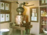 antigua-destileria-museos-andalucia-ojen-alambique